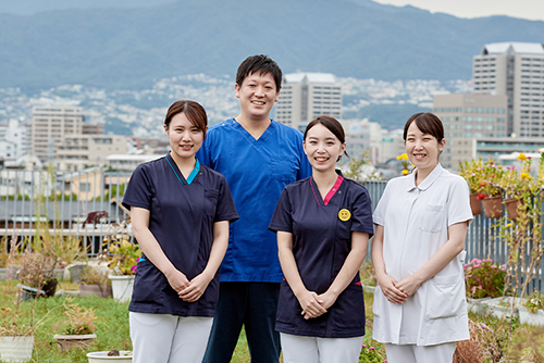 看護部の特徴